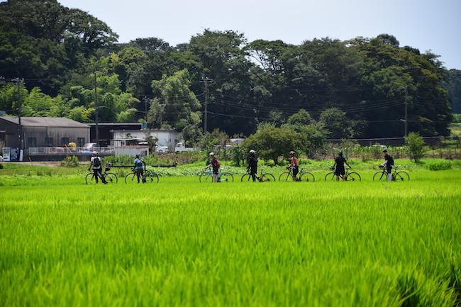 スポーツサイクリング80km湘南リバーサイド