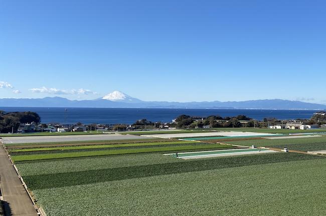 フィットネスサイクリング115km 三浦半島1周